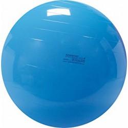 Gymnic Physio 95cm - niebieska