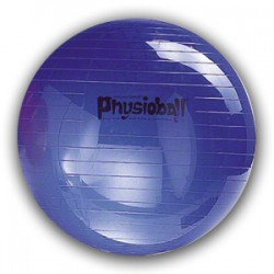 Pezzi Physioball 85cm -...